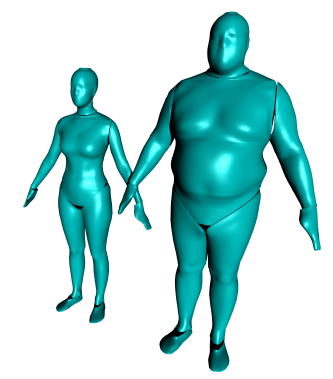 whole-body_surface_model